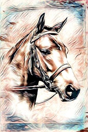 Freehand illustration horse painting