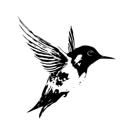 Bird art illustration