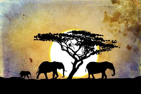 articles: African ethnic retro vintage illustration