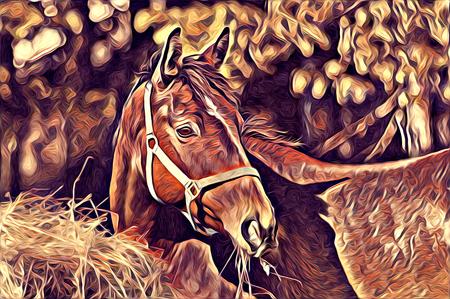 freehand horse art illustration paint Imagens