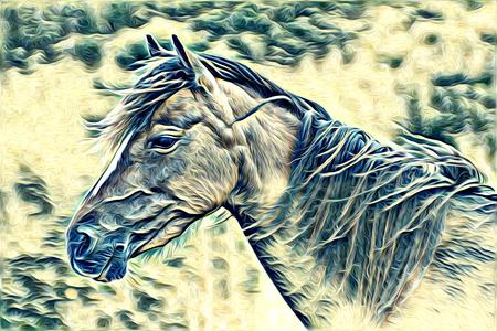 freehand horse art illustration paint Zdjęcie Seryjne
