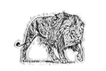 Lion art illustration drawing Archivio Fotografico