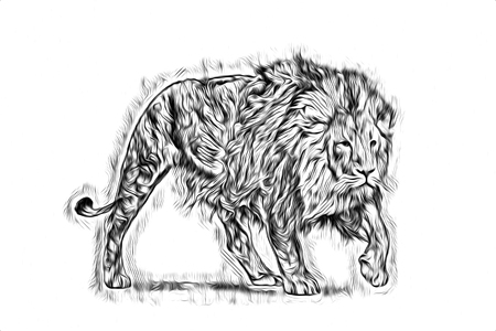 Lion art illustration drawing 版權商用圖片