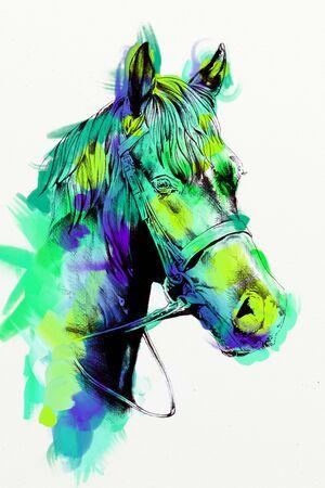Freehand horse head art