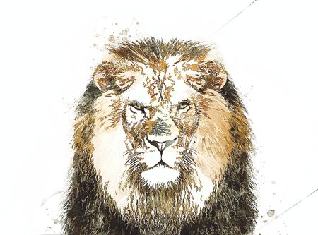 lion art illustration drawing grunge vintage Banque d'images - 148167737
