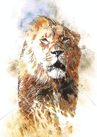 lion art illustration drawing grunge vintage Banque d'images - 148167969