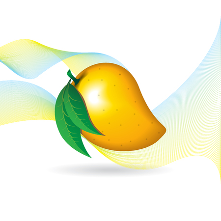 mango fruit contour abstract on white background with flairs for wallpaper.