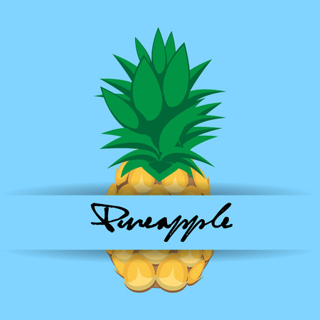 pineapple fruit contour abstract seamless pattern on aqua blue background with name and strip for wallpaper.