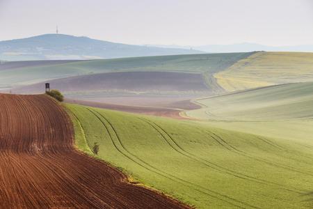 moravia: Morning in Moravia