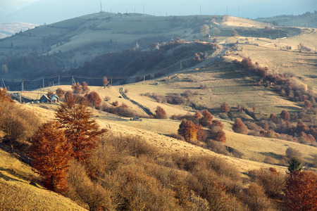 hillsides: carpathian hillsides