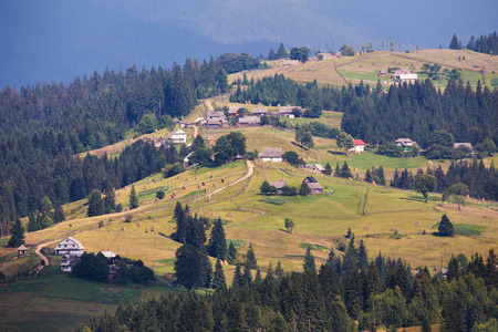 haymow: Carpathians in July