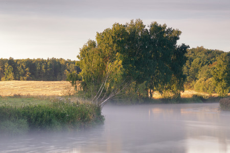 svisloch: August Morning on the river Svisloch Stock Photo