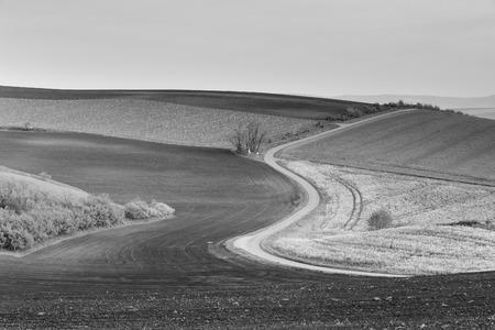 moravia: Road in Moravia hills in April Stock Photo