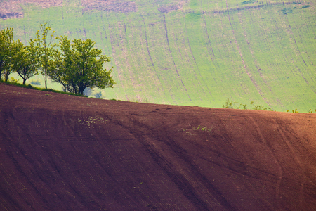 arable: spring hills. Arable lands in Czech Moravia Stock Photo