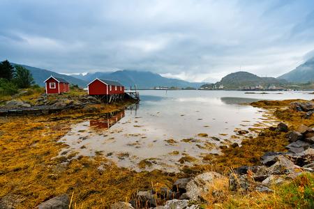 rorbu: Norwegian hut rorbu on bay coast. Nordic cloudy summer day. Lofoten Norway islands.