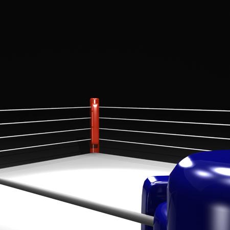 Boxring