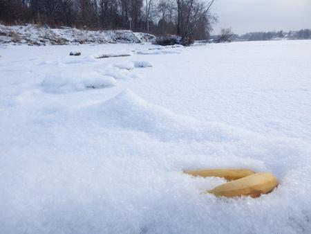 lost lake: Bananas on the snow