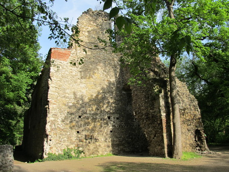 castle wall: Old castle wall in Hungary