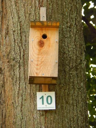 number ten: Nesting box number ten Stock Photo