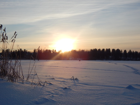 january sunrise: January sunrise over the lake