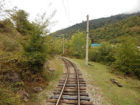 narrow gauge railroad: Narrow Gauge Railroad in Georgia