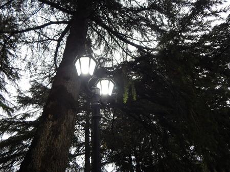 kutaisi: Burning street lamp in the morning in Kutaisi