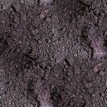 dirt seamless texture  soil land  texture terra background Banque d'images