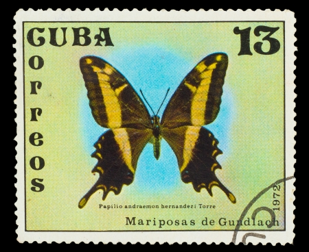 cuba butterfly: CUBA - CIRCA 1972: A stamp printed in CUBA, shows Butterfly Papilio andraemon , circa 1972 Stock Photo