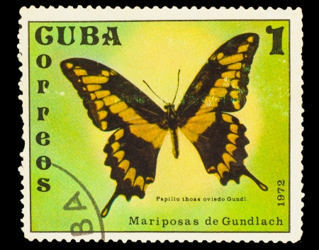 cuba butterfly: CUBA - CIRCA 1972: A stamp printed in CUBA, shows Butterfly papilio thoas oviedo Gundi , circa 1972 Stock Photo