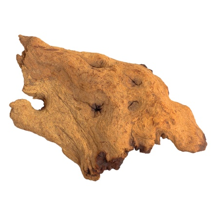 brown piece of an old tree isolated on white background (clipping path) photo