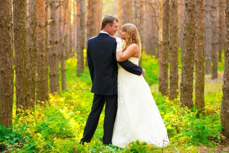 bride and groom standing in a pine forest in autumn, couple wedding photo