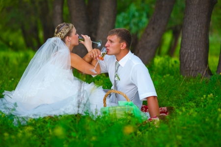 bride and groom at a wedding in a green forest sitting on a picnic, drink wine from wine glasses at a wedding photo