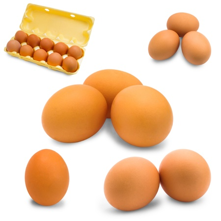 egg isolated set raw breakfast white brown fresh food protein co photo