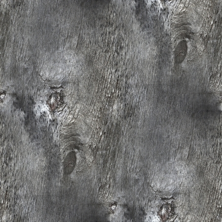 messa: seamless texture oldest tree context rings background your messa Stock Photo