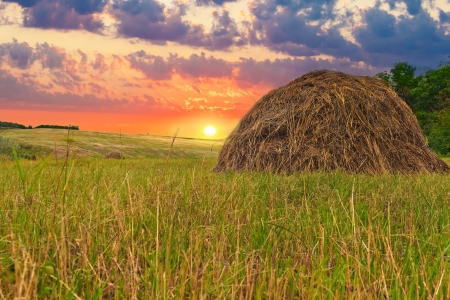 harvests: The Russian landscape in hay field sky