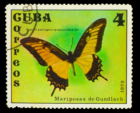 cuba butterfly: CUBA - CIRCA 1972: A stamp printed in Cuba, shows butterfly with inscription Papilio androgeus Epidaurus God. Sal. , circa 1972