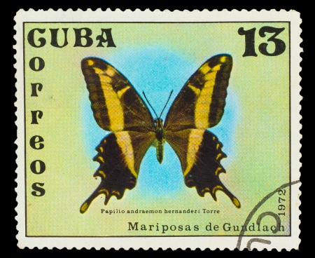 CUBA - CIRCA 1972: A stamp printed in CUBA, shows Butterfly Papilio andraemon , circa 1972 photo