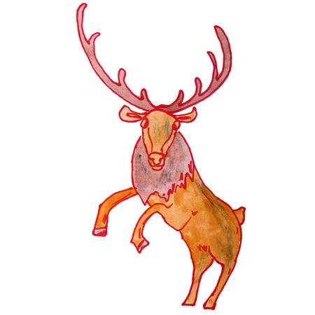 white tail deer: watercolor drawing kids cartoon deer on white background