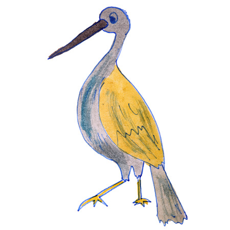 watercolor drawing kids cartoon heron on white background photo