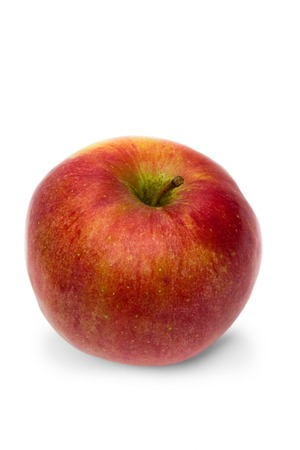 red garden apple on white  photo