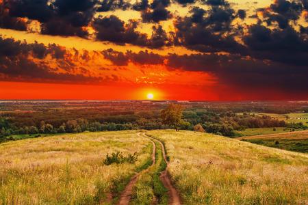 field and sky: carretera paisaje cielo naturaleza del campo de la puesta del sol del verano