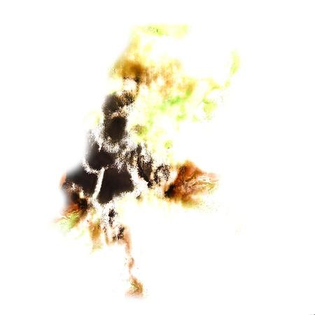 trabajo manual: Blot divorcio ilustraci�n marr�n, verde, artista negro del trabajo hecho a mano est� aislado en el fondo blanco Foto de archivo