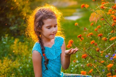 nature photo: Girl child explores exploring orange flower in nature sunset summer photo outdoor areas