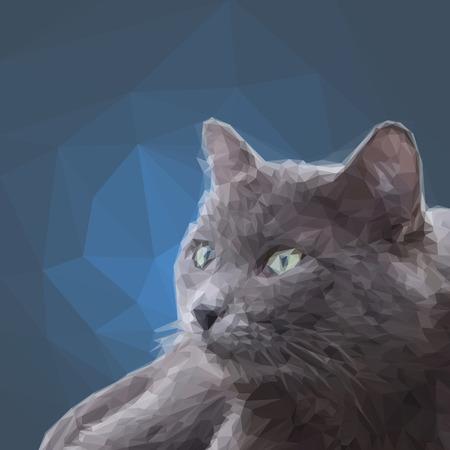 gray cat: Low poly  design triangular gray cat polygon