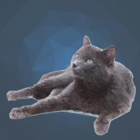 gray cat: Low poly  polygon design triangular gray cat Illustration