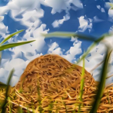 hay bale: haystack hay  nature sky mesh vector illustration