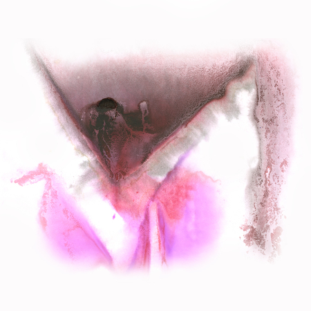 the ink blot: splash  abstract watercolor ink blot watercolour pink black  isolated white background