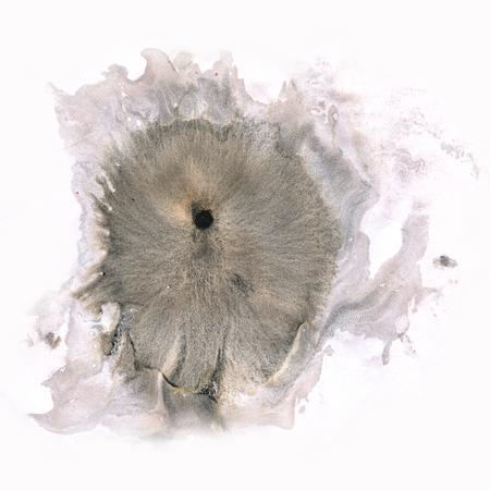 blotch: macro  spot blotch black texture isolated on a white background Stock Photo