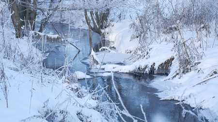 frozen creek: winter creek in the forest snow, frozen branches of trees nature landscape Stock Photo