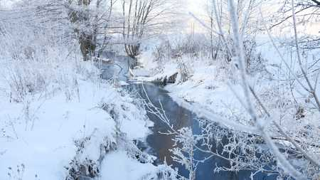 frozen creek: winter creek in the forest snow, frozen branches of trees landscape nature
